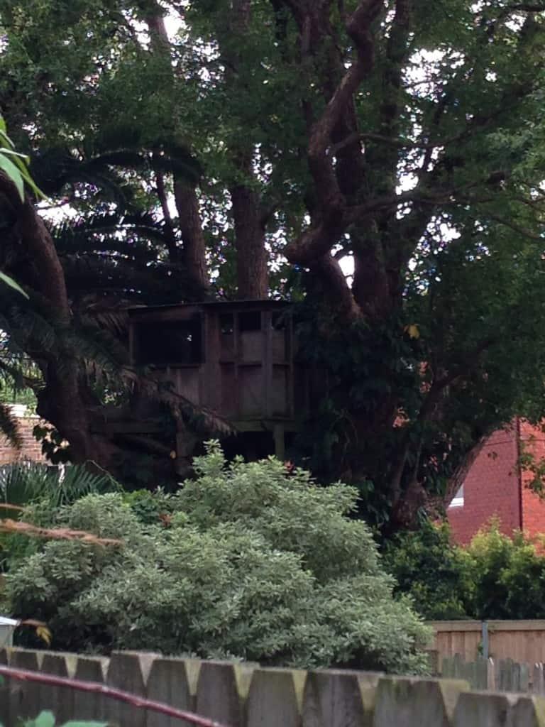 Tree Houses Sydney